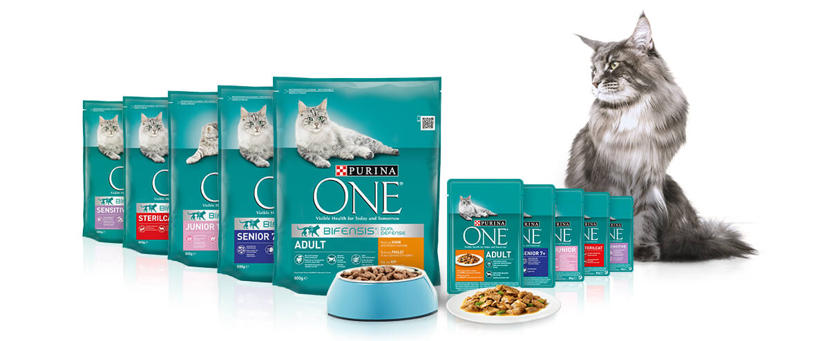 BZ01-425_19-Purina-ONE-Mix-Feeding-landing-page_BANNER_1200x494.jpg